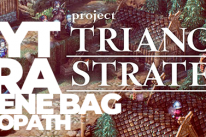 PROJECT TRIANGLE STRATEGY